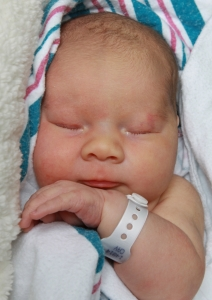 Newborn Penelope